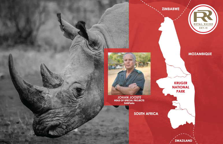 Technology, alliances and focus could turn the tide against rhino poaching in Kruger
