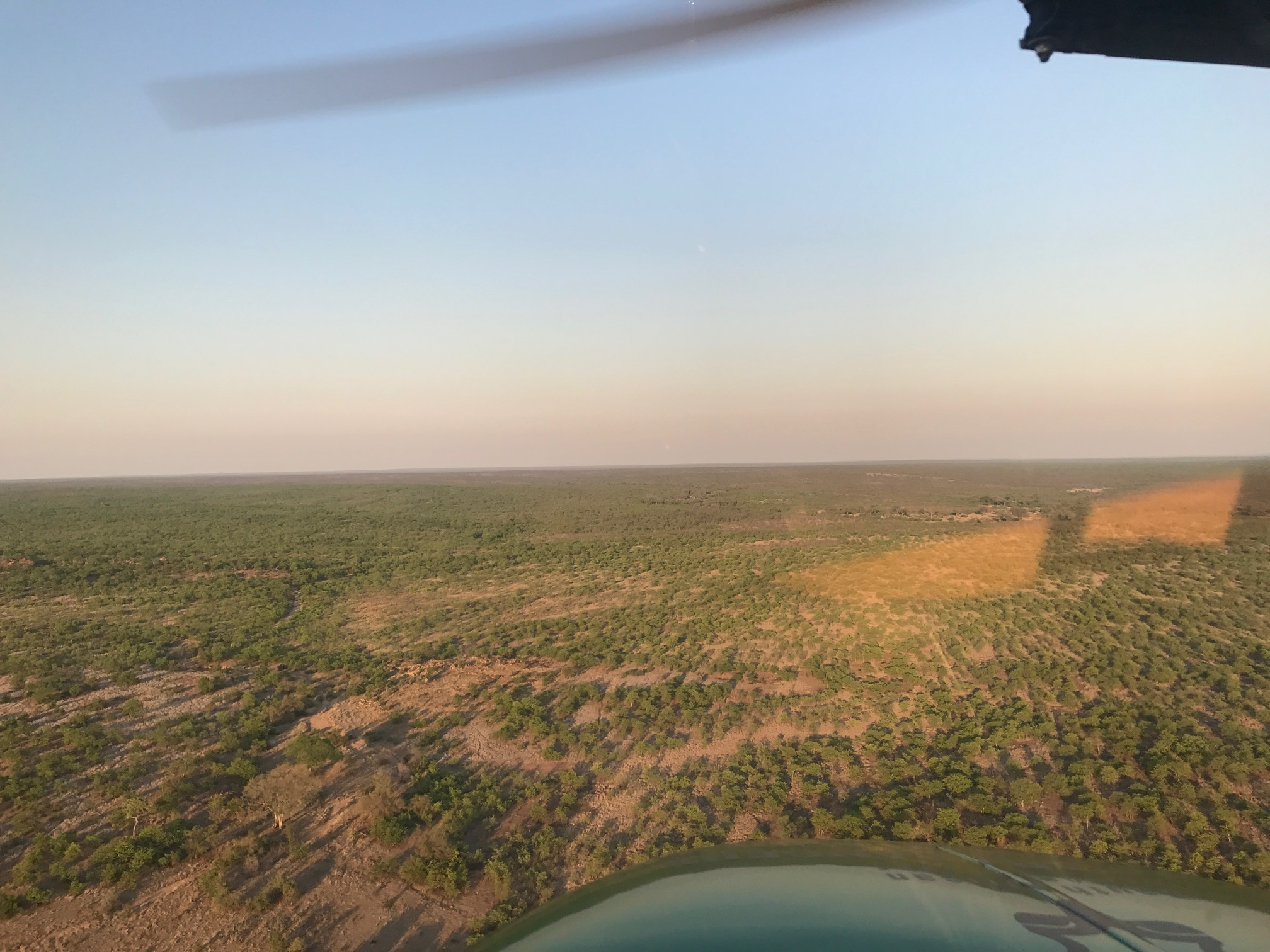 Kruger National Park ranger Andrew Desmet was mistaken for a poacher and shot in an anti-poaching operation. He fought back against severe injuries that meant he can no longer walk long distances or run. Acquiring his pilot's licence, he now contributes to the fight against poaching from the air.